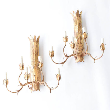Large pair of gold 5 light sconces